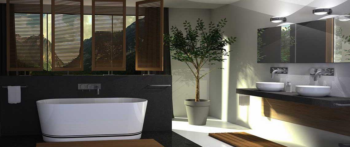 piante ideali per bagno